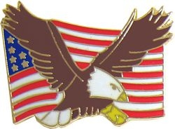 Eagle and United States Flag Pin (1 inch)