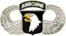 101st Airborne Division Large Pin (1 1/2 inch)