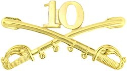 10th Cavalry Crossed Sabers Large Pin (2 1/4 inch)